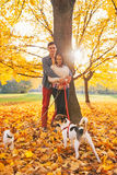 Portrait of couple outdoors in autumn park with dogs Stock Images