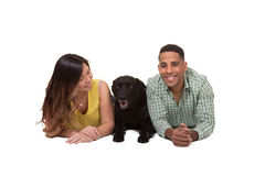 Portrait of a couple and their dog. White Royalty Free Stock Image