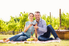 Portrait of couple toasting wineglasses at lawn Stock Images