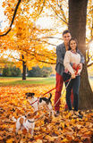 Portrait of couple with two little dogs on the walk in park Royalty Free Stock Photography