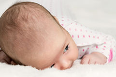 Portrait of crawling baby Royalty Free Stock Photography