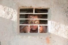 Portrait of a crazy prisoner Royalty Free Stock Images