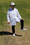Portrait of cricket umpire signaling leg bye during match Stock Photography