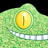 Portrait of a crocodile Royalty Free Stock Photos