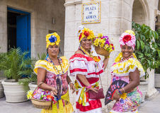 Portrait of a Cuban woman Royalty Free Stock Image