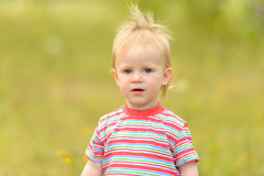Portrait of a curious little girl. Royalty Free Stock Photos