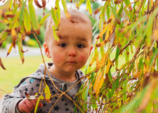 Portrait of a curious little girl. Horizontail photo, photo took in New Zealand, girl is 19 month Stock Photos