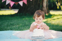 Portrait of cute adorable Caucasian baby girl with dark brown eyes in pink tutu dress celebrating her first birthday. With gourmet cake looking in camera Stock Photo