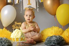 Portrait of cute adorable Caucasian baby girl in tutu tulle skirt celebrating her first birthday stock photography