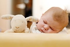 Portrait of cute adorable newborn baby child sleeping Royalty Free Stock Images