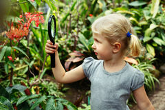 cute adorable white Caucasian girl looking at plants flowers begonia through magnifying glass Royalty Free Stock Image