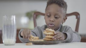 Portrait of cute african american child boy with dirty lips after milk making cookie pyramid sitting by the table in. Portrait of nice african american child boy stock video footage