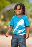 Portrait of a cute african american little boy Stock Photos