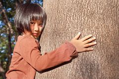Portrait of a cute asian little girl hugging big tree. Royalty Free Stock Images
