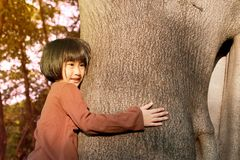 Portrait of a cute asian little girl hugging big tree. royalty free stock photos