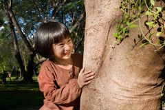 Portrait of a cute asian little girl hugging big tree. royalty free stock photo
