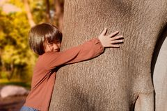 Portrait of a cute asian little girl hugging big tree. stock photography