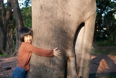 Portrait of a cute asian little girl hugging big tree. stock images