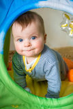 Portrait of a cute baby boy Stock Photography