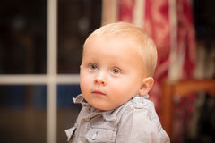 Portrait of cute baby boy child kid indoor Royalty Free Stock Images
