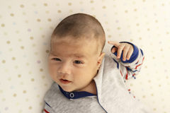 Portrait of a cute baby boy stock image
