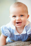 Portrait Of Cute Baby Boy Stock Photography