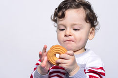 Portrait of a cute baby eating a biscuit looking at it curiously. Stock Images