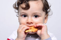 Portrait of a cute baby eating a biscuit. Stock Photos