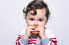 Portrait of a cute baby eating a biscuit. Stock Photo