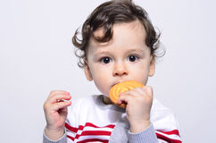 Portrait of a cute baby eating a biscuit. Stock Images