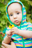 Portrait of a cute baby with a flower Stock Photo