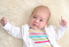 Portrait of cute baby girl. (1,5 months Stock Image