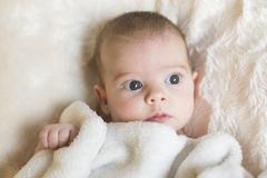 Portrait of  a cute baby girl awake, looking at the camera. She. Is holding a white blanket. White background. Natural light, indoors Royalty Free Stock Photo