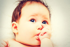 Portrait of cute baby sucking finger, Stock Photography