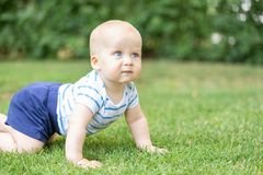 Portrait of cute blond pensive baby boy crawling on green grass lawn outdoors. Thoughtful kid thinking about something. Question o. R idea in children mind royalty free stock photography