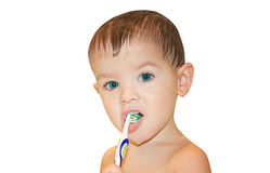 Portrait of a cute boy cleaning teeth. Isolated Stock Image