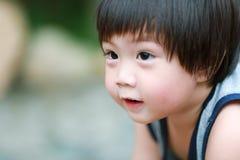Portrait of cute boy Stock Images