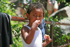 Portrait of a cute boy eating an apple Royalty Free Stock Photography