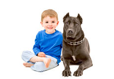 Portrait of cute boy sitting with a dog Stock Image