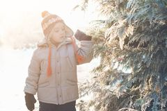 Portrait of cute boy, wearing in warm hat with pom pom in cold w Royalty Free Stock Photos