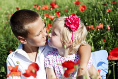 Portrait of cute brother and sister in poppy field Royalty Free Stock Image