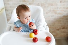 Caucasian child kid girl sitting in high chair eating apple fruit. Everyday lifestyle. Real authentic sweet home moment . copy. Portrait of cute Caucasian child royalty free stock images