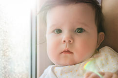 Portrait of cute caucasian little baby girl in backlight Royalty Free Stock Photo
