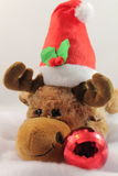 Portrait of cute christmas reindeer plush in studio Stock Images