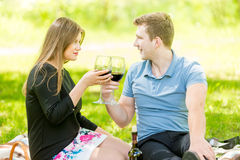 Portrait of cute couple drinking wine on picnic Royalty Free Stock Image