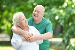 Portrait of cute elderly couple stock photography