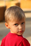 Portrait of cute four year old boy Stock Photo