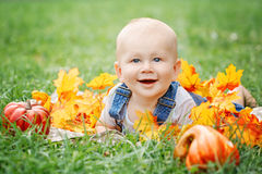 Portrait of cute funny adorable blond Caucasian baby boy with blue eyes in tshirt and jeans romper lying on grass field meadow Stock Photography
