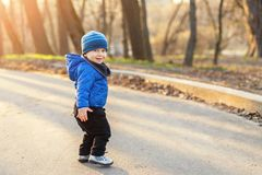 Portrait of cute funny caucasian toddler boy in blue jacket and hat enjoying walking at autumn park or forest during royalty free stock photos