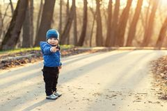 Portrait of cute funny caucasian toddler boy in blue jacket and hat enjoying walking at autumn park or forest during stock photography